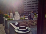 An urban garden/art installation on the former site of the Lafayette Building