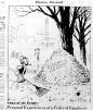 Nov. 7, 1951, Political Cartoon about referendum, unclear, 18